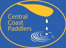 CCP Web Logo